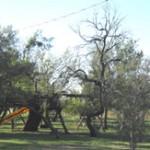 mobile home parks near san antonio tx isds www.smartcashhomes.com 210-215-2572